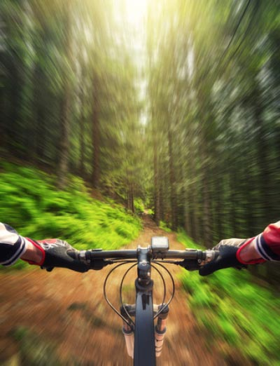 Off-Road and Mountain Biking